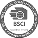 Business Social Compliance Initiative